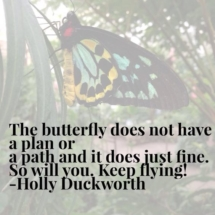 The butterfly does not have a plan or a path and it does just fine. So will you, keep flying!
